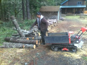 Finishing with this fuel reductions job in Husum WA
